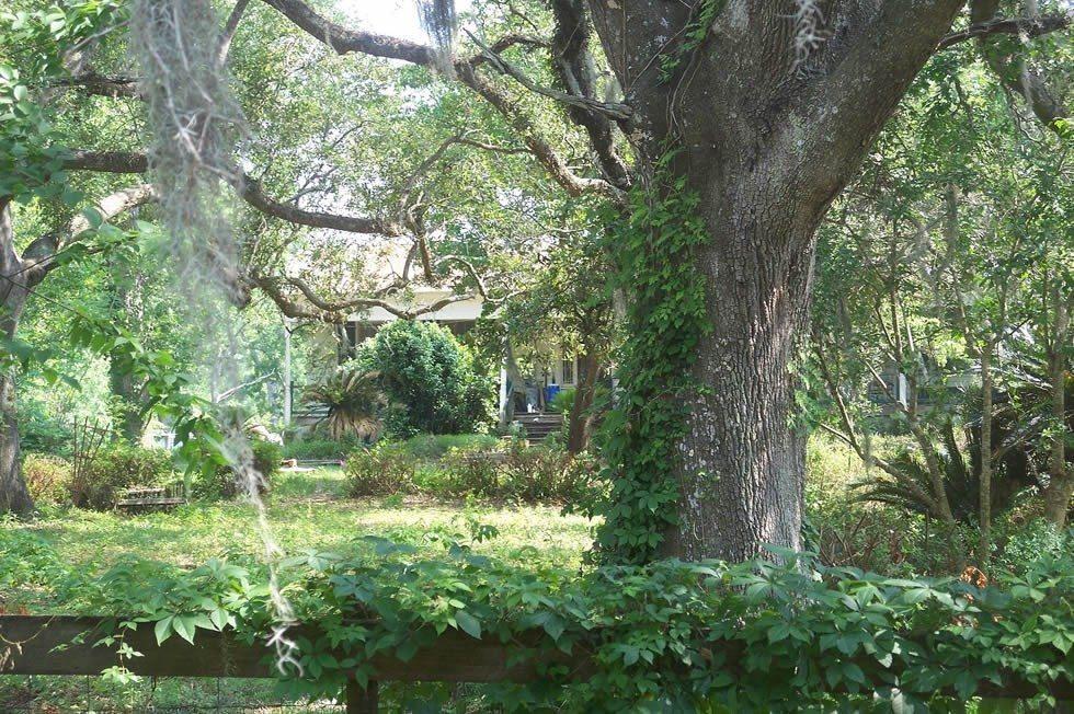 Tallahassee_FL_Roberts_Farm_HD01-0a28dce37f