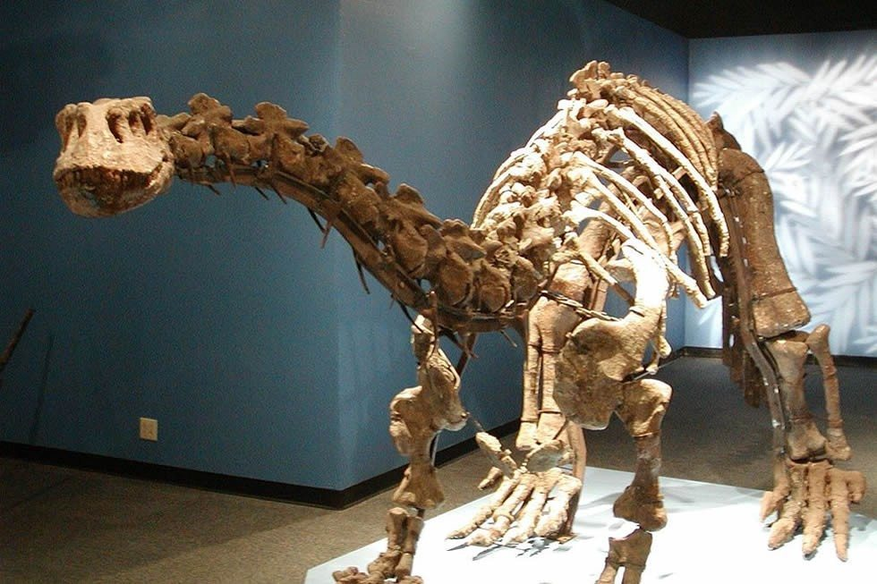 miami_science_museum-b5d2a0136e